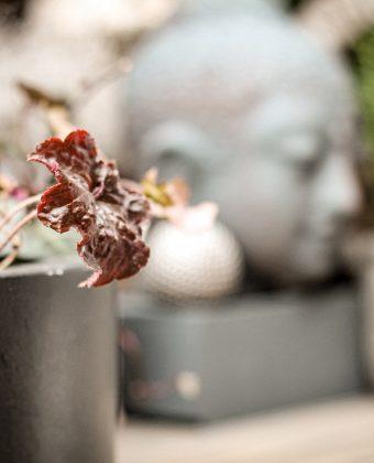 Hof Detail mit Buddha16_14Aussenbereich